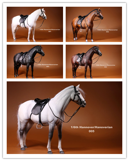 MR.Z 1/6 Scale Hannover/Hannoverian Horse For Figure