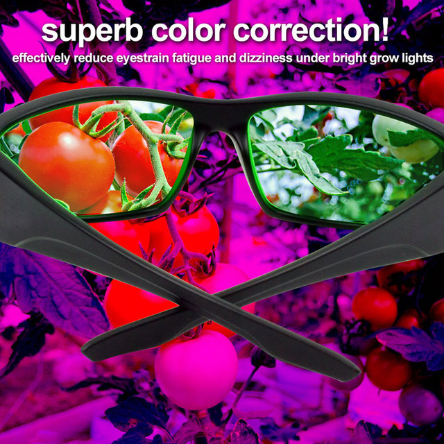 New Arrival Professional Protective Indoor Hydroponics LED Grow Room Glasses UV Polarizing