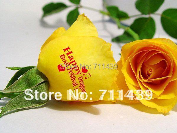 flower printing machine,2016 new updated flower printer and nail printer flower