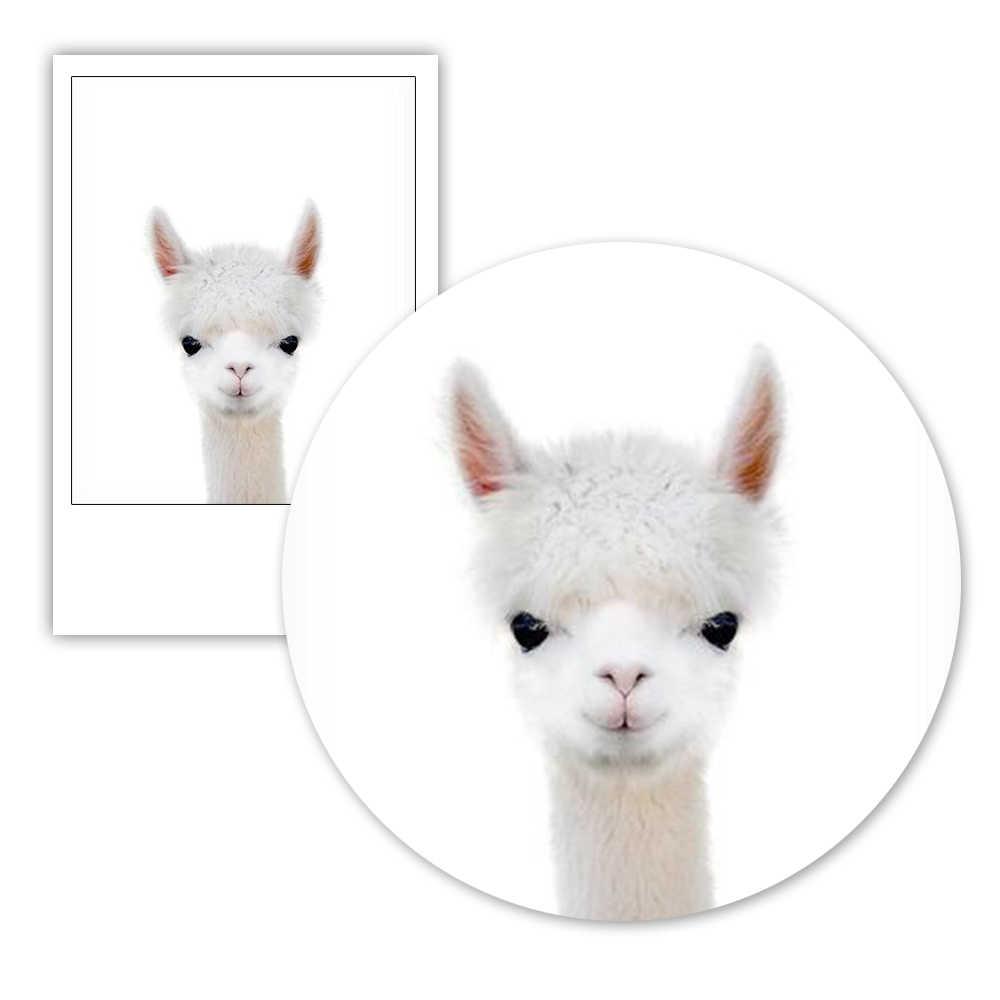Alpaca Nursery Print Baby Farm Animal Farmhouse Decor Printable Digital  Download Kids Room Decor Farm Bedroom Poster