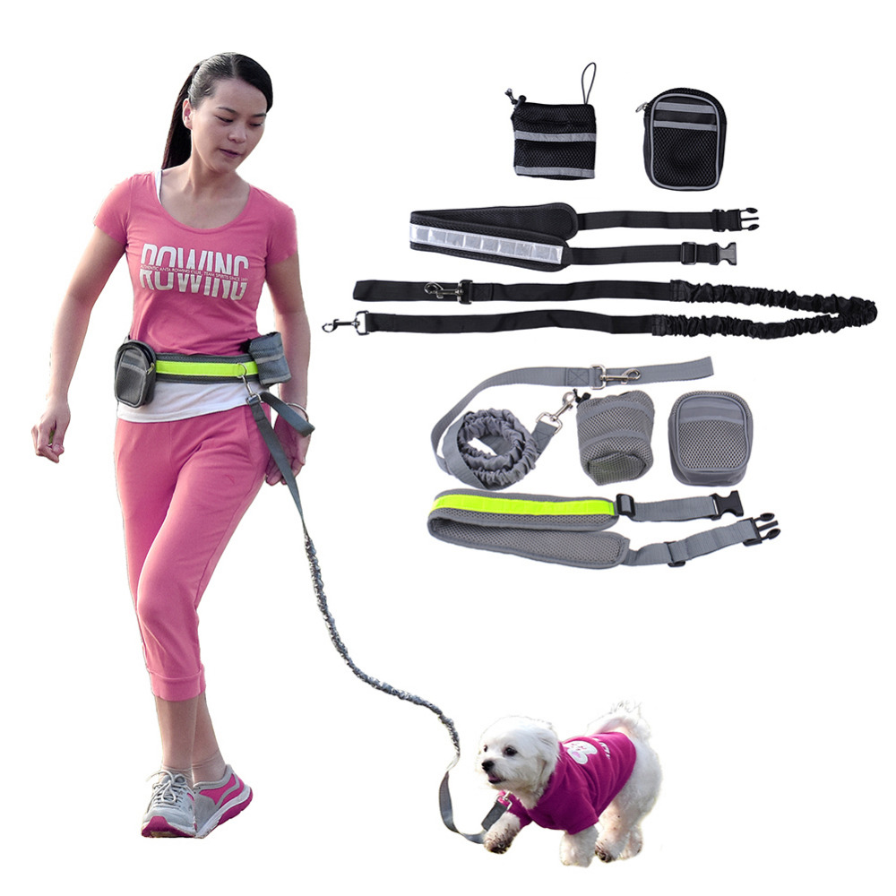 Multifunction Elastic Nylon Belt Running Dog Leash Padded Waist With Reflective Strip + Zipper Bag + Bottle Holder for Dog 2016