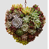 Metal Hanging Plant Basket 3D Heart Shape Succulent Flower Pot Home Decor Plant Wreath Flower Pots