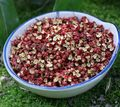 55 г pimenta сычуани перец сычуань перец Китайский колючий ясень перец huajiao соус приправа приправы специи