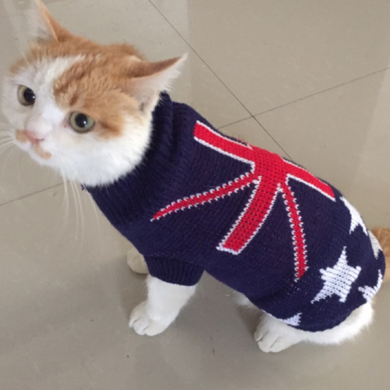 Cute Costum Warm Cat Sweater