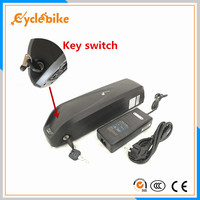 electric bicycle 48v 1000w lithium battery pack 48v 11.6ah bottle e bike battery with BMS + charger