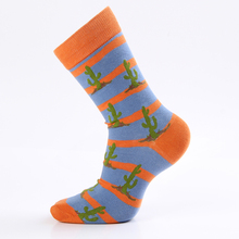 Cotton Colorful Socks for Boys and Men 5 Pairs Set