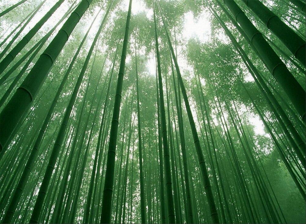 de Bambu escova de Dentes escova de