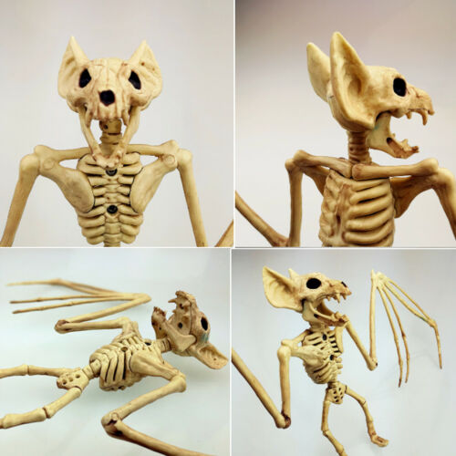 Halloween Skeleton Tool Holiday Party Accessories 30*17*5cm Room Escape Holiday Tricky Gadget Terror Plastic Halloween Skeleton