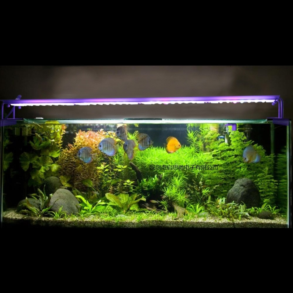 Programmable 96 W grande lumière LED d'aquarium Dimmable acuario lampe pour récif corail aquarium aquario lampe EU US AU UK Plug