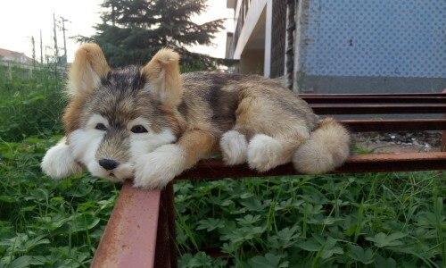 Simulation couchage chien polyéthylène & fourrures husky chien poupée cadeau environ 38x24x14 cm 254