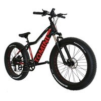 Variable Speed Mountain Bike Li ion Battery Electric Bike Aluminium Alloy Snow Bike Off road Bike With Super Broad 4.0 Tyre