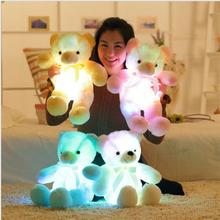 50cm Light Up LED Teddy Bear