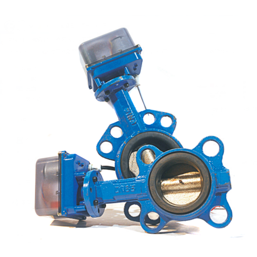 DN80 DN100 Electric butterfly valve