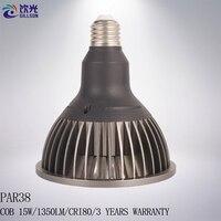 LED Par30 12 W Par38 15 W E27 Par 30 38 Lampe de Projecteur COB Dimmable Spot Lampe Ampoule 110 V 220 V Blanc Chaud Blanc Blanc Gris En Option