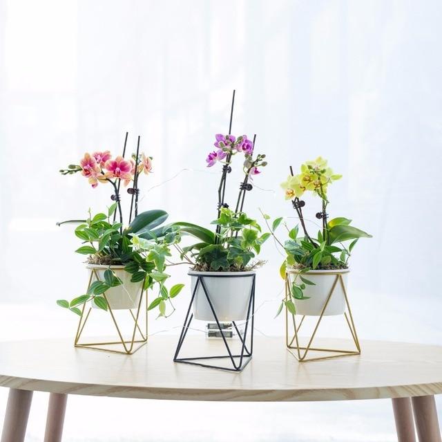Flower Pots Decorative Indoor Garden White Ceramic Round Bowl With Metal Planter Plant Holder Bonsai