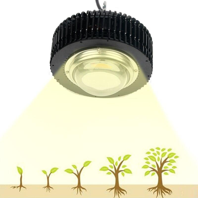 LED cultiver la lumière COB 3500 K CXB3590 CXB3070 lampe à spectre complet pour les plantes LED lampe de croissance Fitolampy intérieur semis fleurs tente