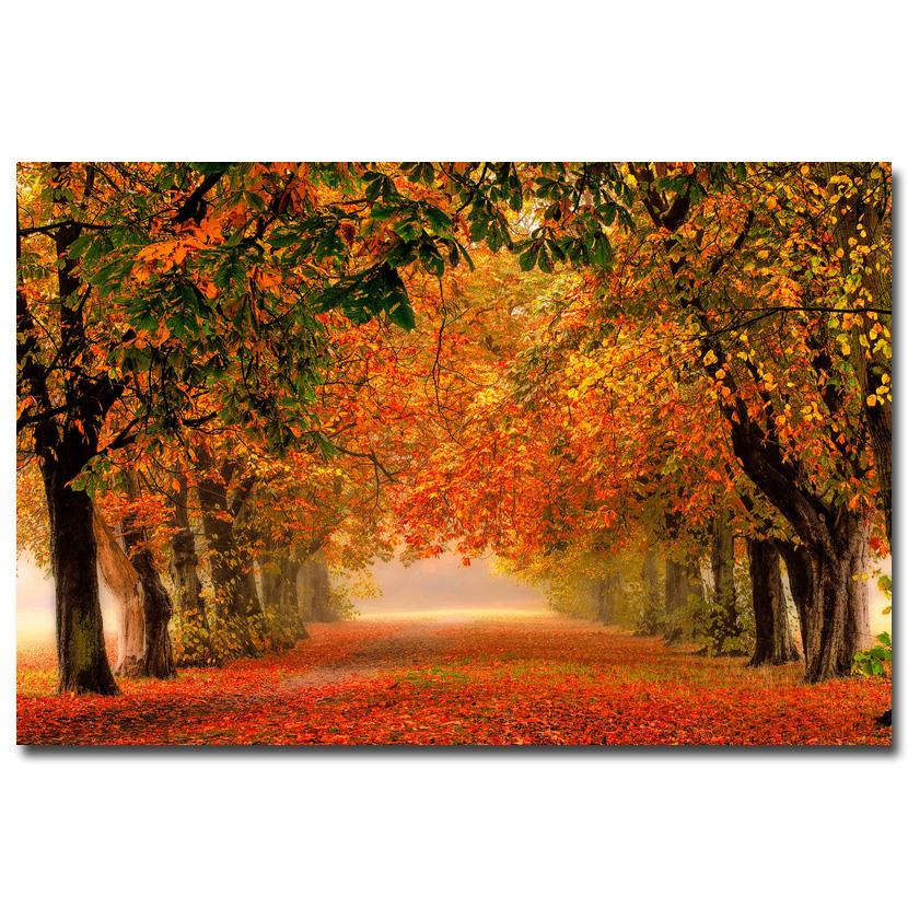 NICOLESHENTING Automne Chemin Forestier Rouge Feuilles