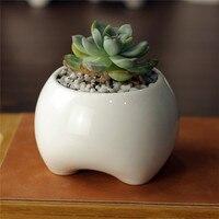 Simple Creative White Mini Ceramic Teeth Shape Cute Feet Zakka Desktop Small Fleshy Flower Pot Planter