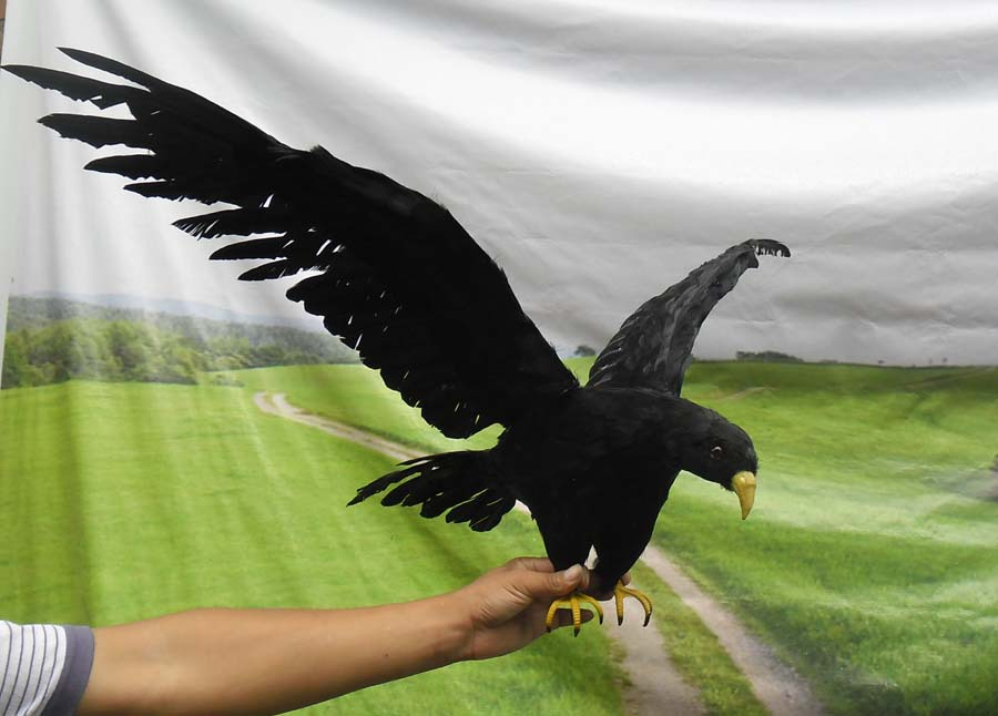 big flying simulation black bird lifelike wings crow model gift about 90x45cm big simulation eagle toy lifelike decoration wings eagle model gift about 85x18x65cm