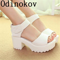 Fashion Women Summer Shoes White Black Platform Soft PU Sandals Women's High-Heeled Shoes Thick Heel Sandals Flip Flop