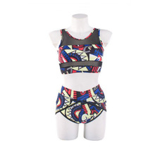 Bikinis Set 2019 plus fat large size printed bikini mesh swimsuit swimwear women high waist push up