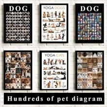Fun cute font b pet b font cats and dogs meow hundreds font b pet b