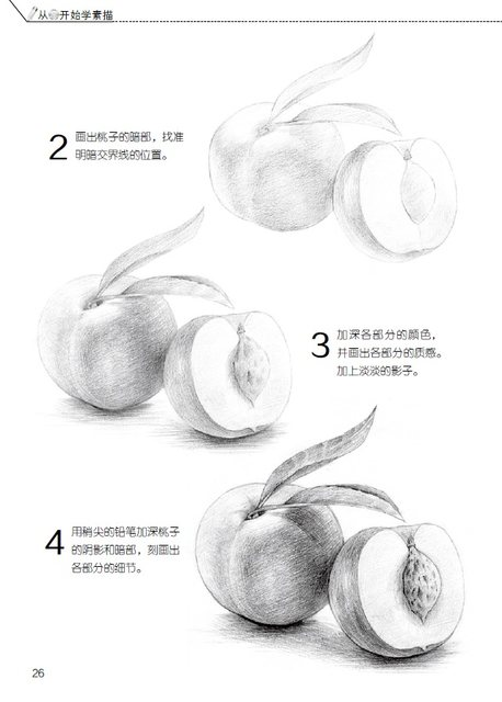 online shop chinese pencil sketch painting textbooks starting from