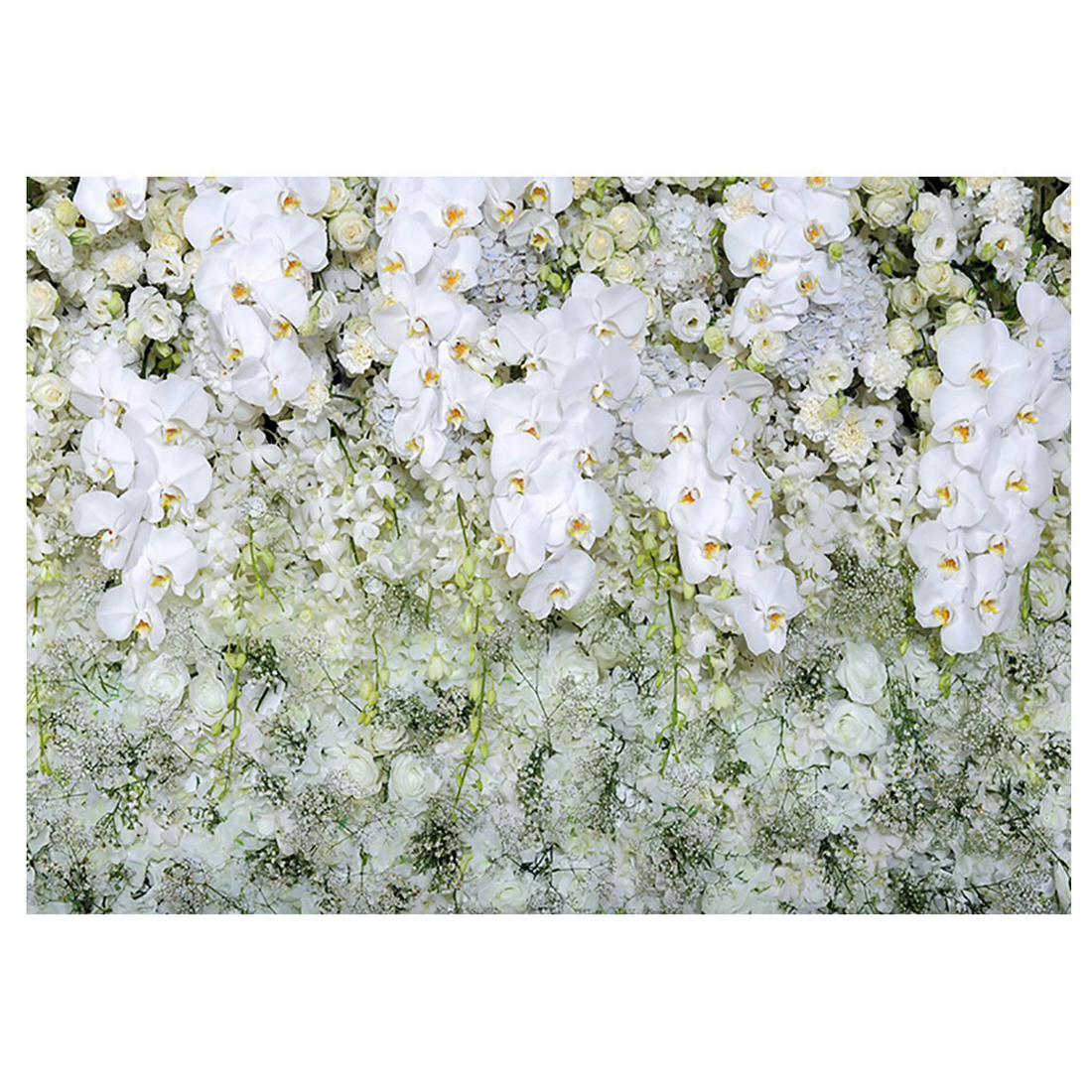 5x3ft Wedding Photo Background White Flowers Backdrops For Valentine's Day Photography Backdrop zоом 3 day white with acp excel 3