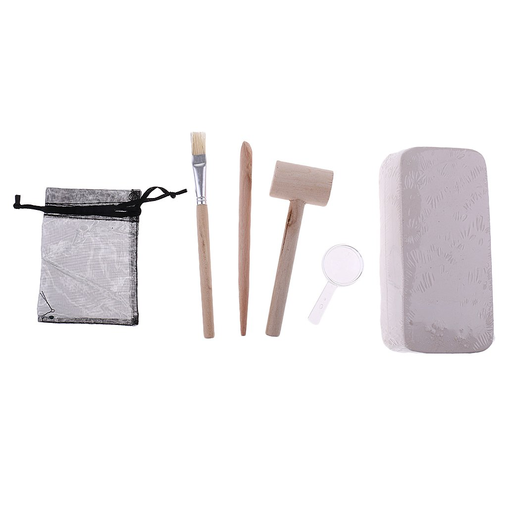 Digging Mineral Rock Excavation Discovery Toy Tool Kit Geology Science Early Learning Educational Toys Gift for Children Kids
