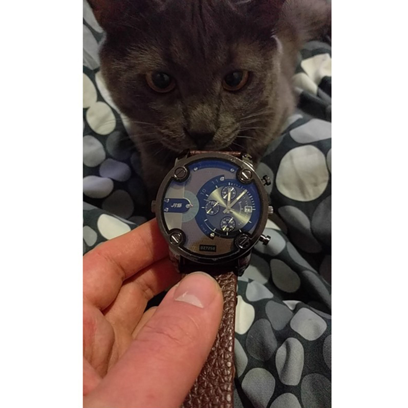купить Promotion! JIS Blu-ray Men Quartz Watch Luxury Leather Band Date Display Big Dial Wristwatch Black Brown Montre pour homme недорого