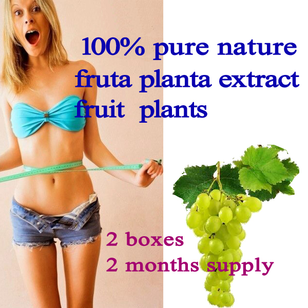 Fruit plants extract slimming100% pure nature fruta planta extract reduce weight free shipping(2 boxes) men health support do bodybuilding and libido boosting pure herbal extract tribulus terrestris extract saponins 90