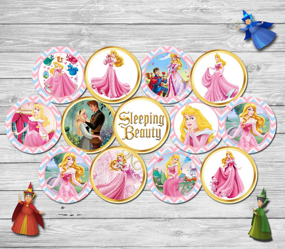 Princess Aurora Package Party Sticker Cupcake Toppers Goodie Bag