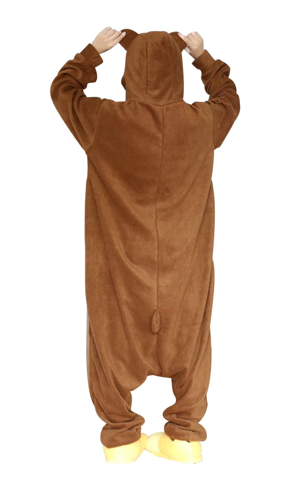 Brown Bear02