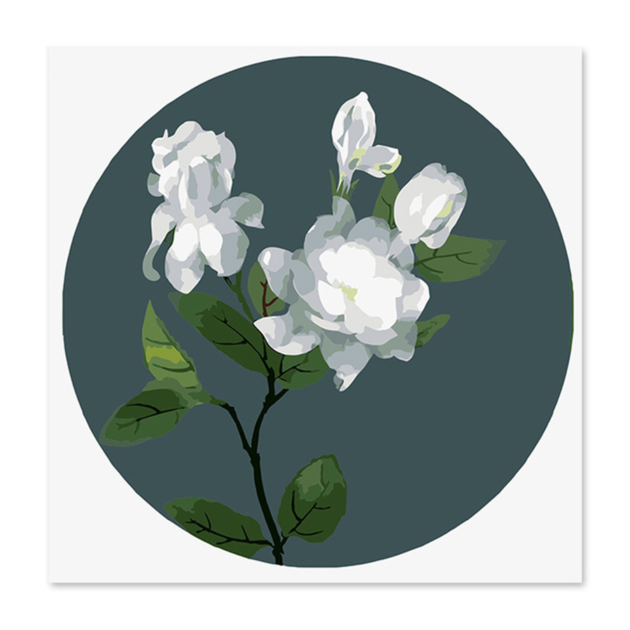 White rose flower Draw on canvas Digital Painting Famous paintings Abstract  Color Gardenia Diy by numbers