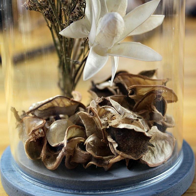 Elegant Einfache Moderne Getrocknete Blumen Handwerk Desktop Transparent Glas  Dekoration Künstliche Blumen Vintage Hauptdekor Hochzeitsdekoration In  Einfache ...