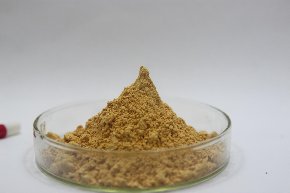 High Quality 1KG 90% saponins Tribulus Terrestris Extract Powder Free shipping