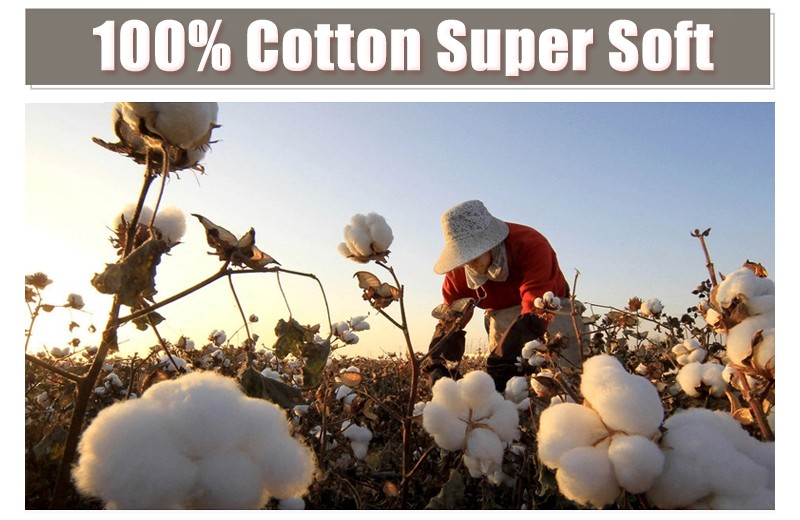 cotton-short-x800