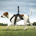 Карданный держатель для камеры  сундук для собак  ремень для DJI OSMO POCKET & GOPRO