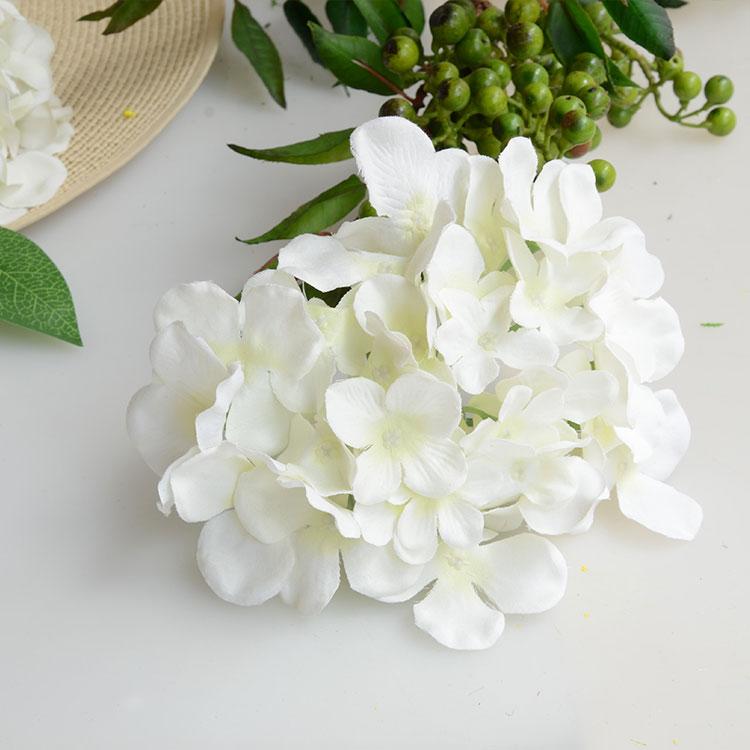 эухарис цветок доставка из Китая