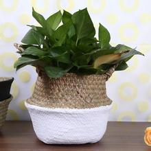 Fällbara Vävda Seagrass Förvaringskorg Blomma Korg Sticka Korg Blomkruka Hantverk Hängande Dekorativa Korgar Vikta