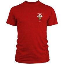 Cymru, camiseta de Rugby Retro galés, ventilador de apoyo Vintage, camiseta de 6 Naciones para hombres, Gales, L3, envío gratis, camiseta barata, nuevas camisetas de llegada