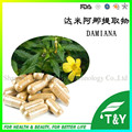 Herbal medicine for sex improvement Damiana Extract Powder damiana 500mg*300pcs