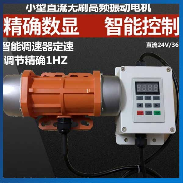 24V 30W 40W Mini DC Motors Speed Control DC Brushless Motor Vibration24V 30W 40W Mini DC Motors Speed Control DC Brushless Motor Vibration