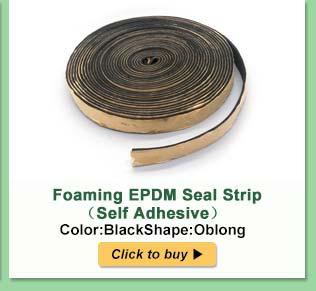 Sealiing strip (9)
