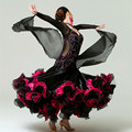Изысканный горный хрусталь бальные танцы платья стандартный вальс танго бальные танцы одежда Конкурс стандартный dance dress dress