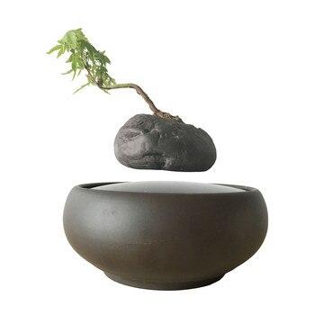 Pot de fleur bonsaï flottant Couche bonsaï arbre jardin lévitation