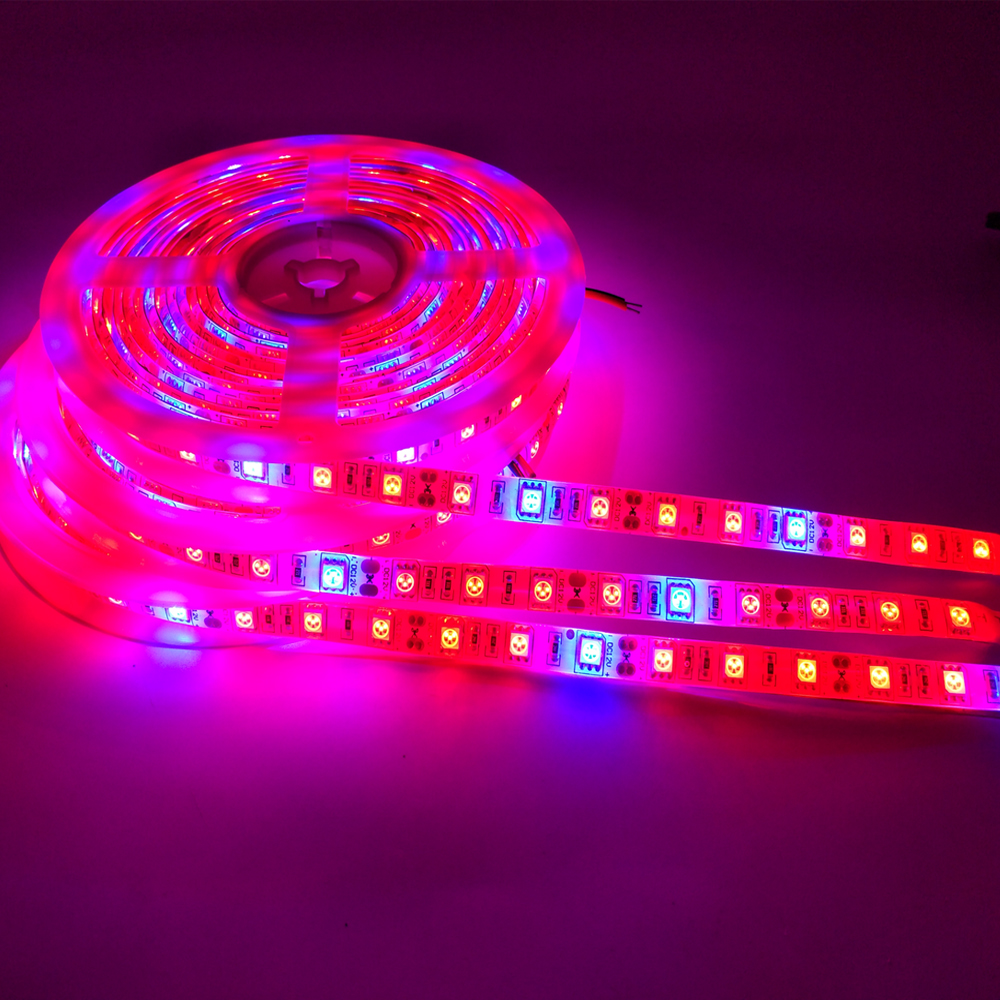 5M LED Plant Grow Light SMD 5050 Hydroponic Systems Grow Led Bar Light Flowers And Plant Waterproof DC 12V Led Grow Strip Light