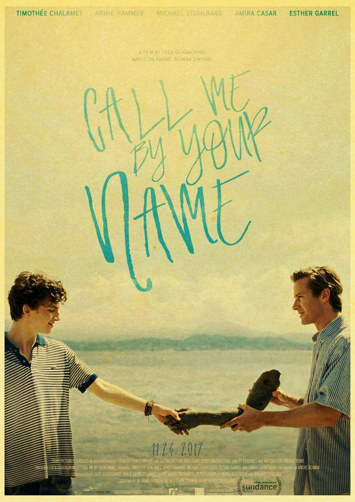 Detail Feedback Questions About Call Me By Your Name Movie Poster