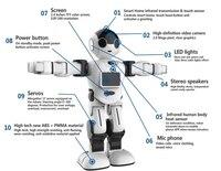 Mini robô inteligente para crianças  brinquedo do robô do chefe rk01|robots for kids -