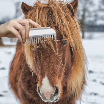 Aluminum Alloy Horse Grooming Currycomb 6